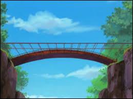 Dans quel pays se trouve le pont du Ciel et de la Terre ?
