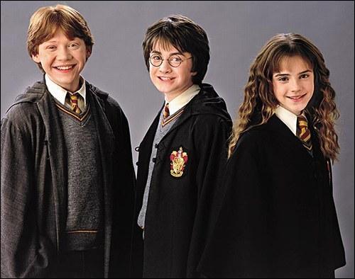 Pour quel sort Hermione réprimande-t-elle Ron ?
