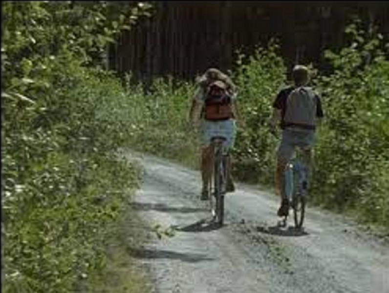 Qui est l'interprète de la chanson ''La Bicyclette'' sortie en 1968 ?