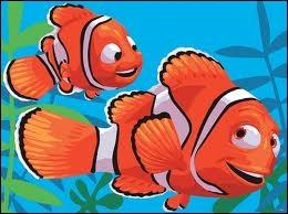 Comment s'appelle ce petit poisson, handicapé par une nageoire atrophié, et qui va à ses dépends, découvrir le rude monde aquatique. ? ...