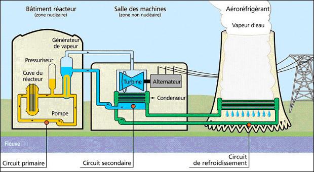 Quel est l'élément qui permet à la fois de transporter la chaleur (caloporteur), ralentir les neutrons (modérateur), protéger les intervenants des radiations (écran radiologique) tout en étant présent en grande quantité à l'état naturel ?