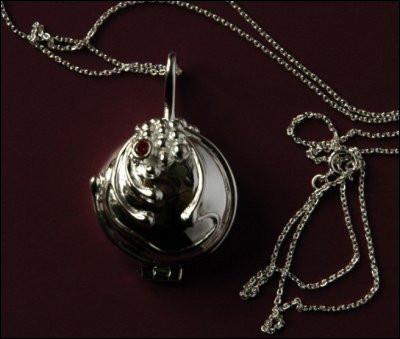 À qui appartient le collier que Stefan a offert à Elena ?