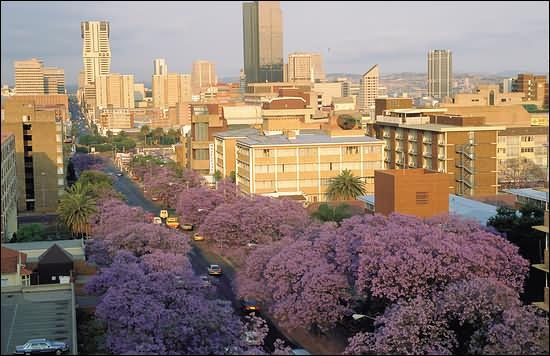 Nelson Mandela a lutté des années contre la ségrégation raciale en Afrique du Sud, mais quelle est la capitale de ce pays ?