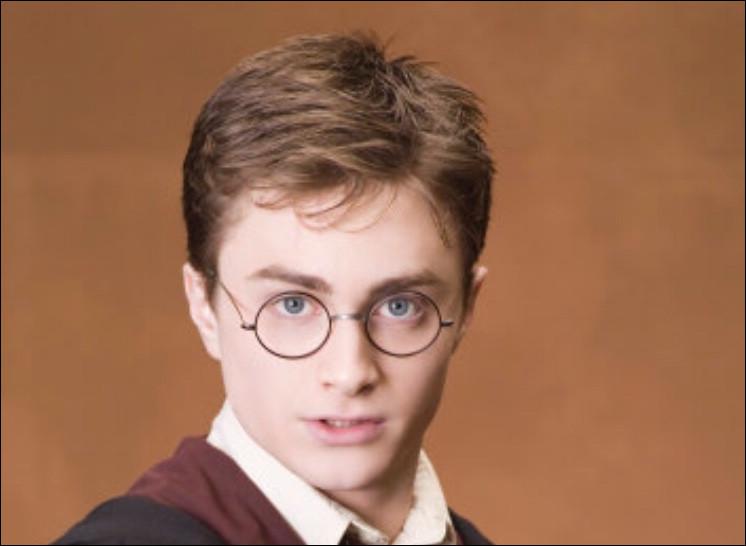 Dans quelle maison Harry Potter est-il envoyé ?