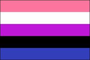 Test des drapeaux LGBTQIA+