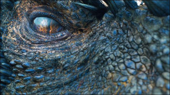 AÀquel dragon appartient cet œil ?