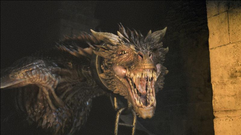 Comment se nomme ce dragon ?
