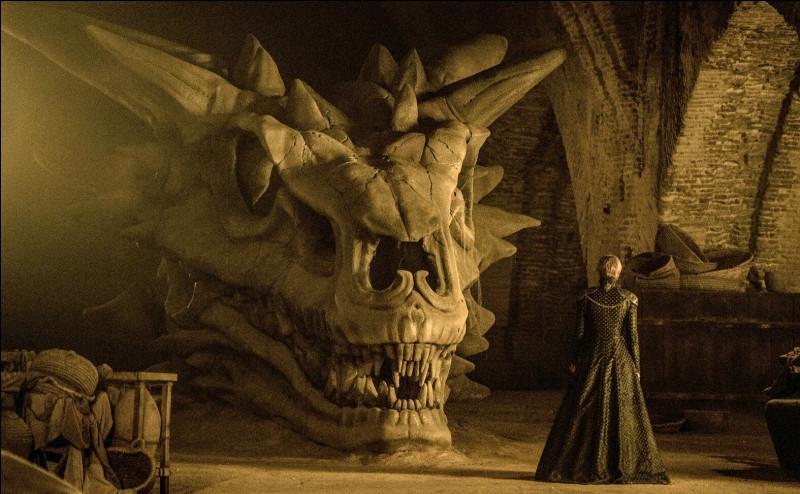 À quel dragon ce crâne appartient-il ?