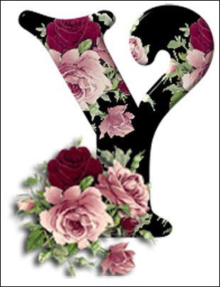 Ylang-Ylang : il a un parfum suave et fleuri. D'où est originaire cet arbre dont on cultive les fleurs ?