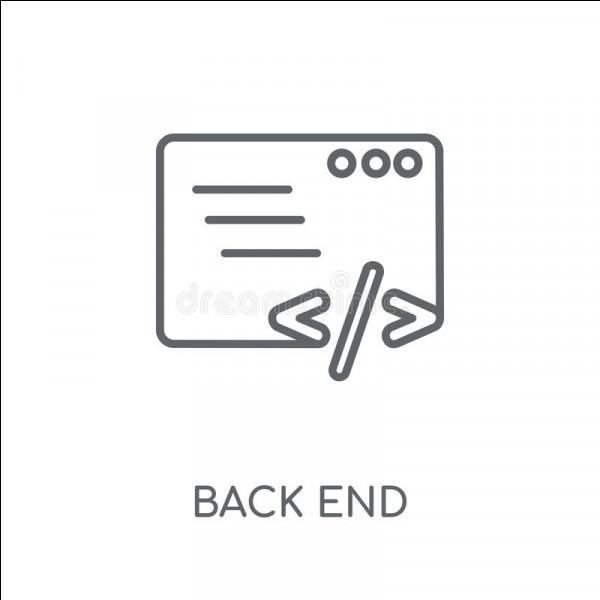 Le langage Back-End utilise :