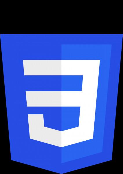 Que signifie CSS ?