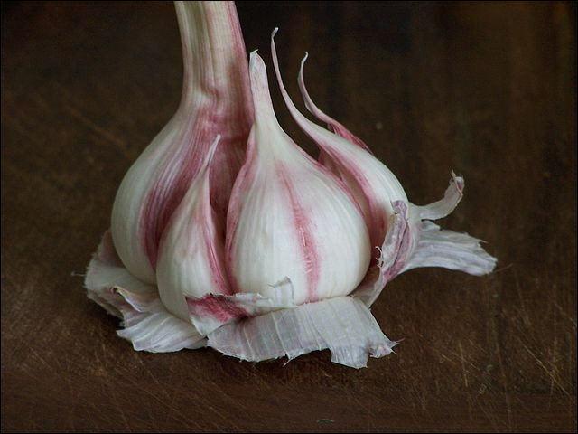 Outre son odeur, l'ail peut se caractériser par sa couleur : blanc, rose, violet, vieux, laid, etc. Quel est le seul ail rose IGP en France ?