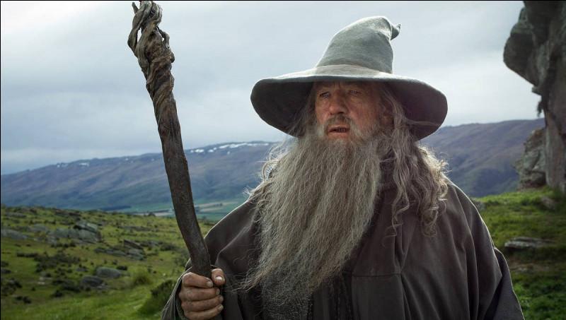 Comment se nomme le magicien à barbe blanche ?