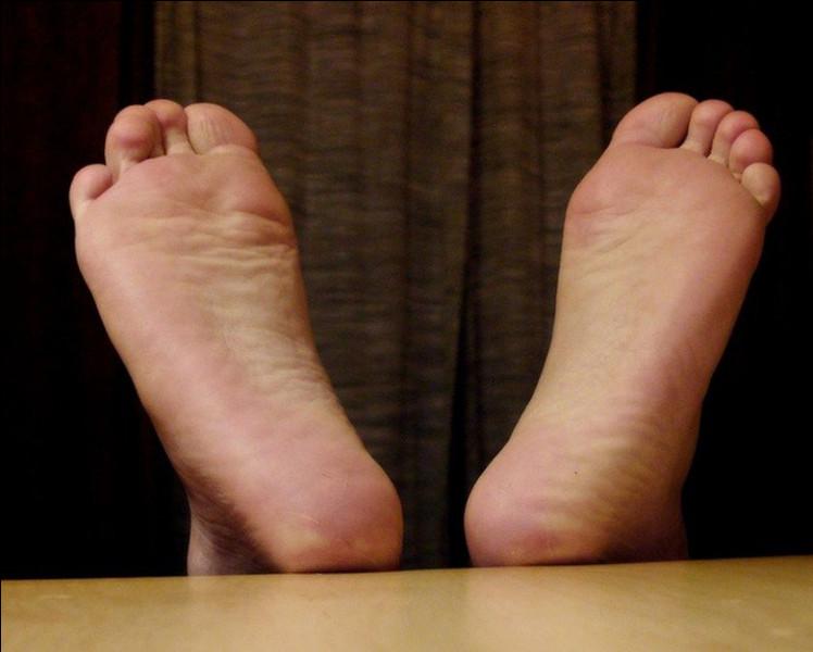 Comment appelle-t-on la phobie des pieds ?