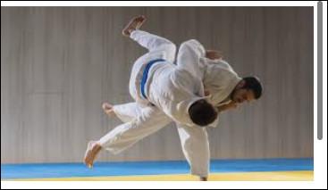 Au judo, quel est le grade le plus élevé parmi ces ceintures ?