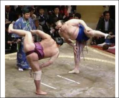 Avant un combat de sumo, que jettent les lutteurs sur la zone de combat ?