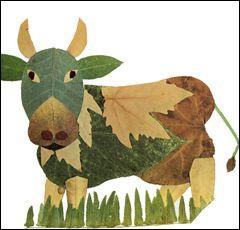 De quelle couleur est la vache de race montbéliarde ?