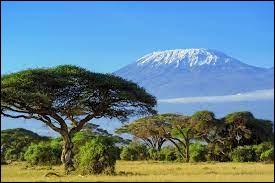 Géographie - Dans quel pays d'Afrique se situe le Kilimandjaro ?