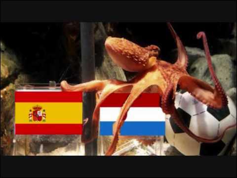 En 2010, cet animal prédit sans se tromper les résultats de l'équipe d'Allemagne lors de la Coupe du Monde de Football, il en désignera également le vainqueur !