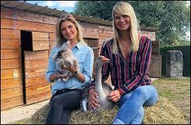 """Sur quelle chaîne est diffusée l'émission """"Animaux à adopter, nouvelle famille pour une nouvelle vie"""" montrant le quotidien de plusieurs SPA à travers la France ?"""
