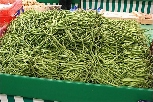 Les haricots verts (si, si, mon p'tit gars : ça se mange !) : alors, frigo ou pas frigo ?