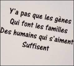 """Musique : Pour quel chanteur """"y'a pas que les gènes qui font les familles Des humains qui s'aiment suffisent"""" ?"""