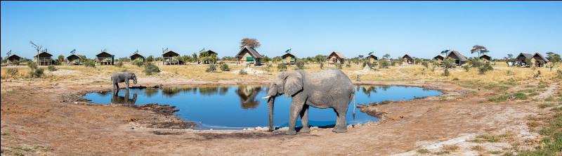 Géographie : quel pays d'Afrique australe sans accès à la mer est surnommé la Suisse de l'Afrique ?