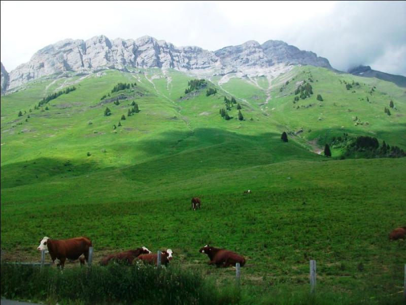 Quel type d'agent pathogène est à l'origine de la maladie de la vache folle ?