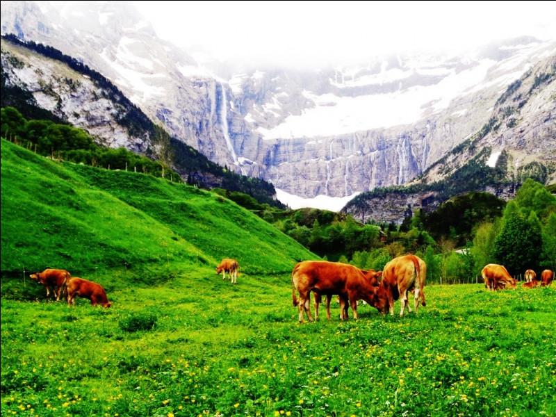 """Quel détroit porte un nom signifiant littéralement, en grec ancien, """"Passage de la vache"""" ?"""