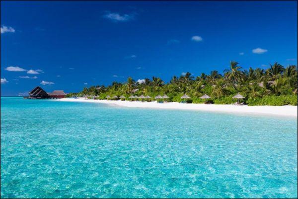 Comment appelle-t-on à la fois un habitant et la langue parlée aux Îles Kiribati, dans l'océan Pacifique ?