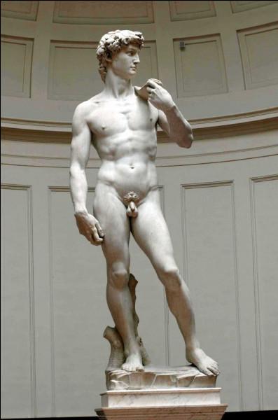 """Il est l'auteur de ce """"David"""", chef-d'oeuvre de la sculpture de la Renaissance, réalisé entre 1501 et 1504 :"""