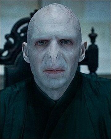 Qui est en réalité Voldemort ?