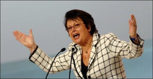 Elle occupe ou a occupé les fonctions de : Ministre du Logement et députée des Yvelines