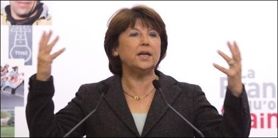 Elle occupe ou a occupé les fonctions de : Ministre français de l'Emploi et de la Solidarité et Maire de Lille