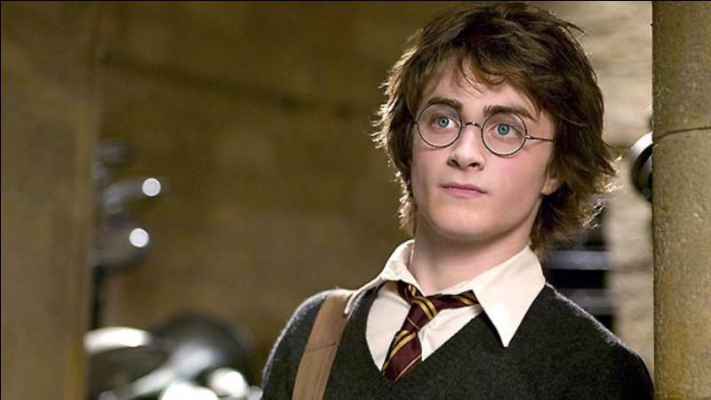 """Oh ! Voilà mon ami. C'est Harry Potter. Il me remplacera durant quelques questions de ce quiz.En voici une : quel jeu de société sur """"Harry Potter"""" n'existe pas ?"""