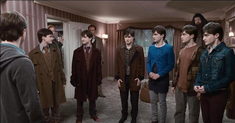 Qui meurt après l'attaque des Mangemorts le jour des 17 ans de Harry ?