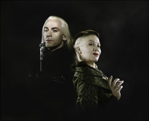 En quelle année Narcissa et Lucius se marient-ils ?