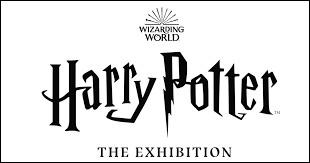 """""""Harry Potter"""" est :"""
