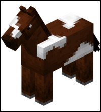 Quel est le record de saut en hauteur d'un cheval ?
