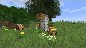 Depuis quand existent les ruches et les abeilles ?