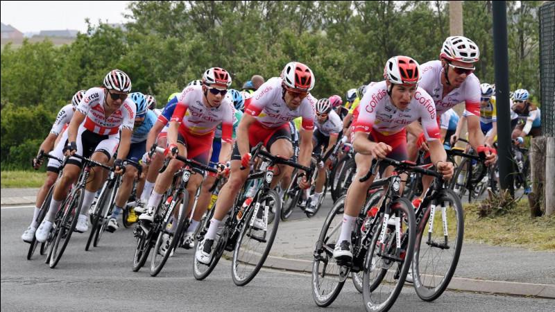 De quelle couleur est le maillot que porte le premier du classement du tour d'Italie ?
