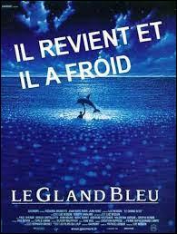 ''Le Gland bleu'' : Je schtroumpfe ce film rafraîchissant mais il n'a rien à voir avec ''Le Grand Bleu'', énorme succès de...