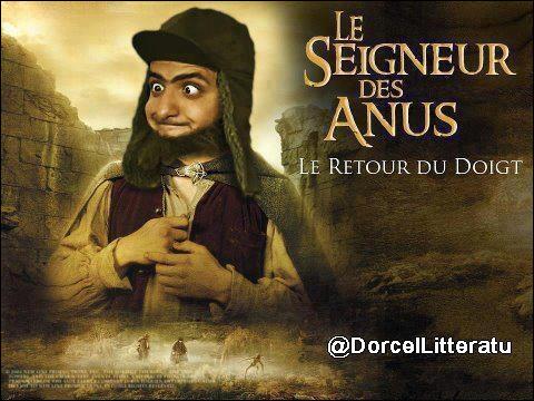 On ne sait pas qui a réalisé ''Le Seigneur des anus'' ! Mais on n'a pas de doute sur celui qui a fait la trilogie du ''Seigneur des anneaux'' :