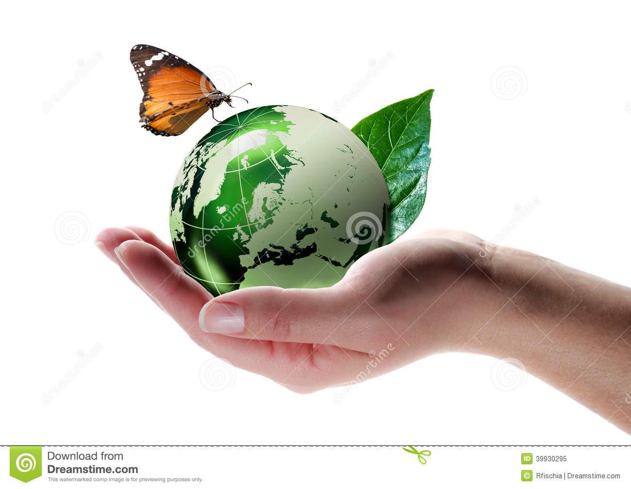 Respectes-tu l'environnement ?