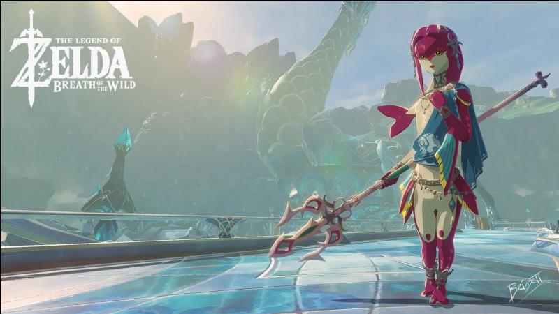 Quel autre personnage de ''Zelda'' préfères-tu ?