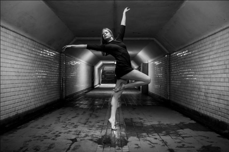 """Quelle fable de Jean de La Fontaine se termine par ce vers : """"Eh bien, dansez maintenant."""" ?"""
