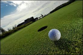Comment se nomme la surface de gazon qui entoure le trou au golf ?