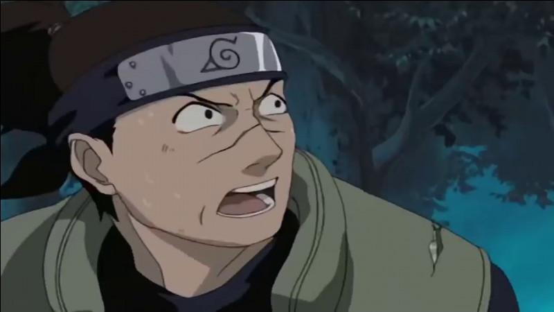 Que vole Naruto ?