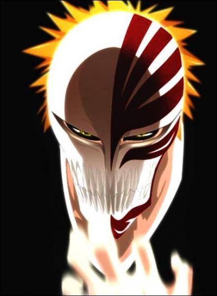 (Ichigo Kurosaki) Pourquoi peut-on dire qu'il est aussi un Vizard ?