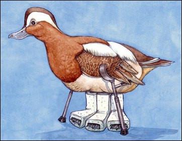 """""""Ne pas casser trois pattes à un canard"""" signifie..."""